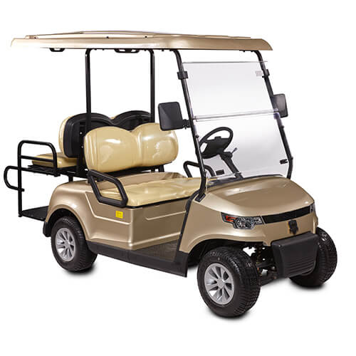 DDG-C2 + 2 PRO Golf Cart For Sale