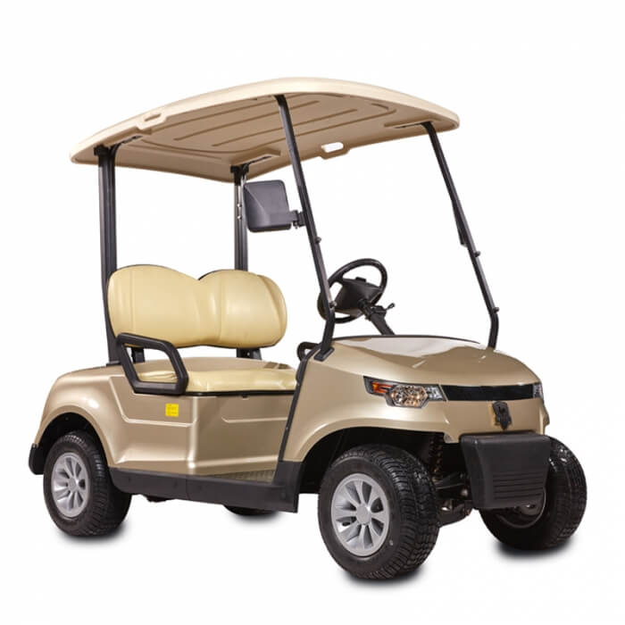 DDG-C2 PRO 2-Seater Electric Golf Cart1