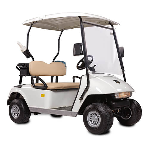 DG-C2 - 2-Seater Electric Golf Cart