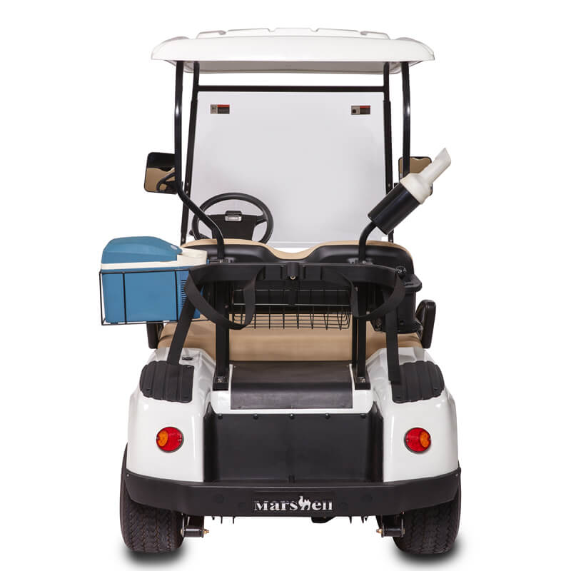 DG-C2 2-Seater Electric Golf Cart2