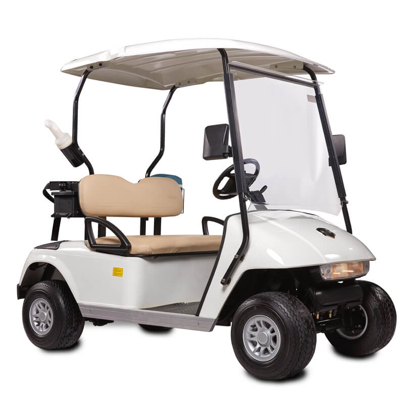 DG-C2 2-Seater Electric Golf Cart3