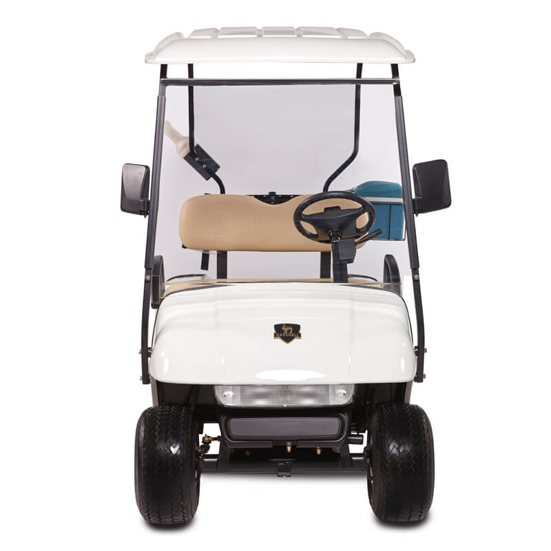 DG-C2 2-Seater Electric Golf Cart4