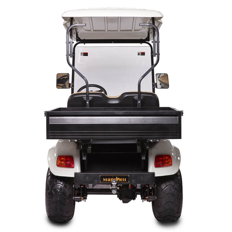 DH-C2 UTILITY 2-Seater Electric Utility Cart with Cargo Box1